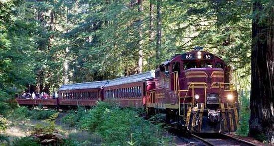 Baechtel Creek Inn: Skunk Train to the Redwoods