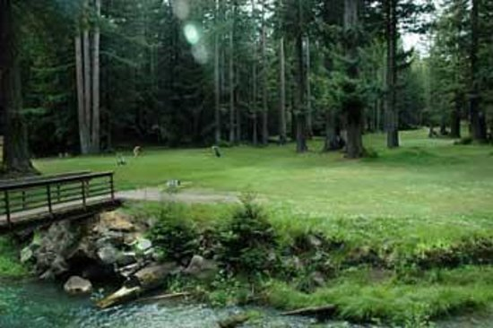 Baechtel Creek Inn: Brooktrails Golf Course in Willits