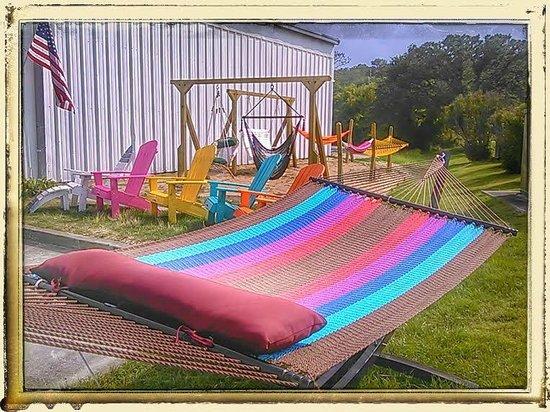 Outdoor Hammock Display Picture Of Kitty Hawk Hammocks