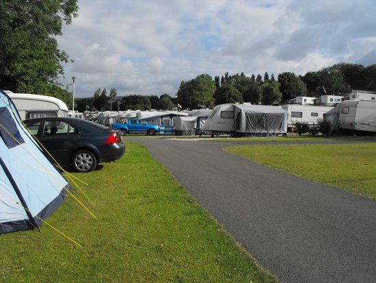 Lady's Mile Holiday Park: view from the tent