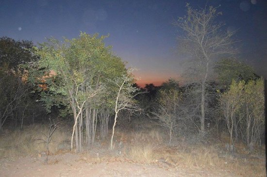 Silonque Bush Estate: Zonsopkomst vanaf de stoep