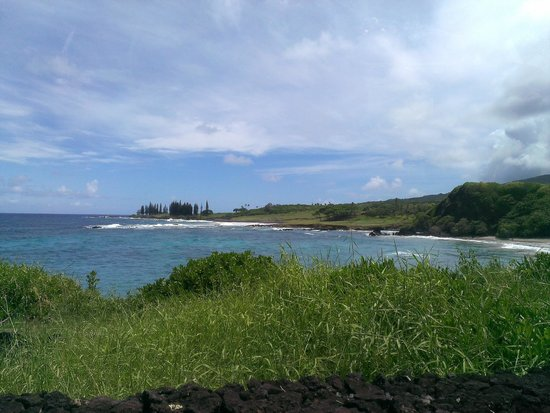 Road to Hana Tours: Coast