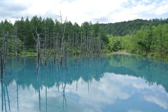 Blue Pond : น้ำใสจนสะทอ้นเงาท้องฟ้า เป็นภาพที่สวยงาม