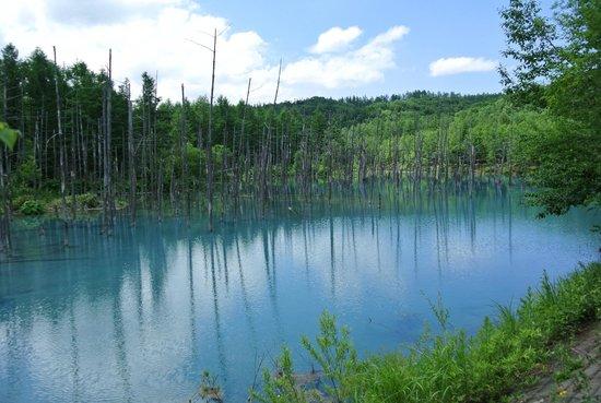 Blue Pond : น้ำในสระเป็นสีฟ้าเพราะ แร่อลูมินั่มในน้ำ