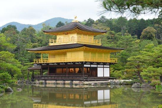 Kinkaku-ji (Goldener-Pavillon-Tempel): You mustn't go back without this pict