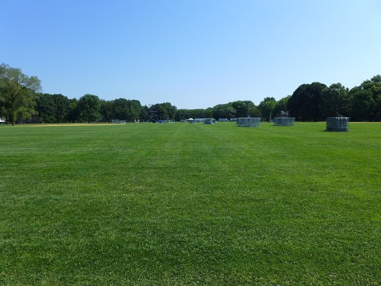 Central Park: Great Lawn