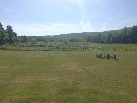 Mountain Horse Farm B&B and Wellness Retreat: Morning view from the Lodge