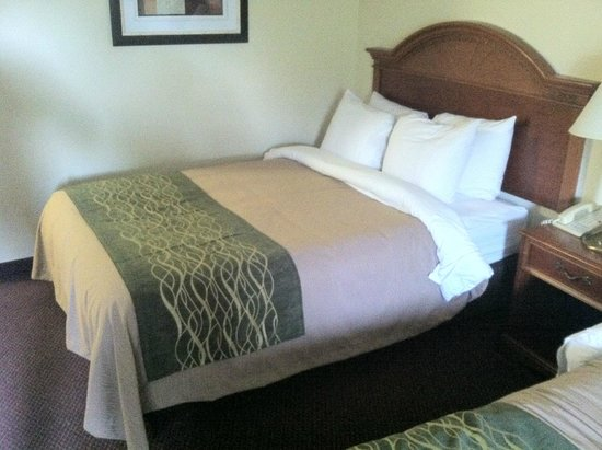 Comfort Inn Lehigh Valley West: Double Bed