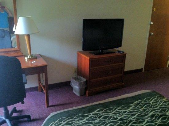 Comfort Inn Lehigh Valley West: T.V.