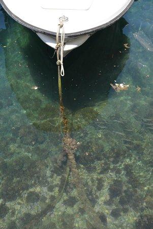 Old Town: Лодка и вода