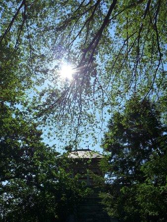 Central Park: Belvedere Castle