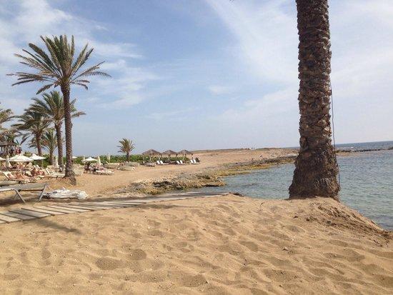 TUI SENSIMAR Pioneer Beach Hotel by Constantinou Bros: The hotels beach