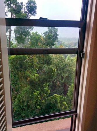 The Langham Huntington, Pasadena, Los Angeles : View from the bathroom window