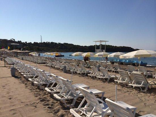Gardenia Beach Hotel: Stranden (stenig)