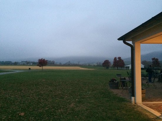 King Family Vineyards : Even the fog obscuring the mountains makes for a beautiful view!