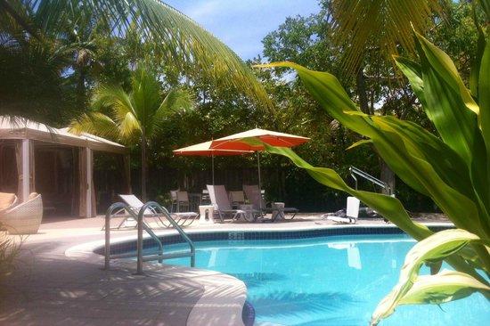 Hotel Urbano: Pool Side