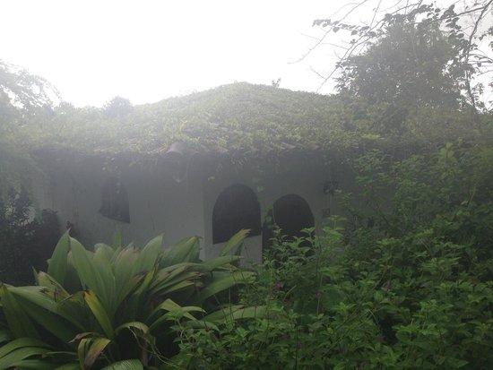 Hotel Mountain Paradise: Cottage