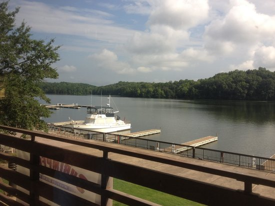 Joe Wheeler State Park: View from restaurant past the transient slips and out into the lake