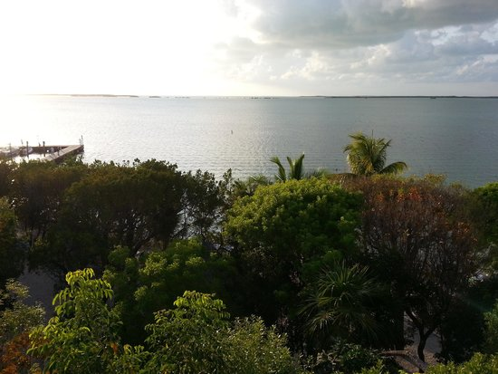 Hilton Key Largo Resort: view from our room