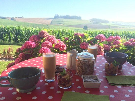 Saint Leon, Fransa: Petit déjeuner sur la terrasse de la maison des bleuets