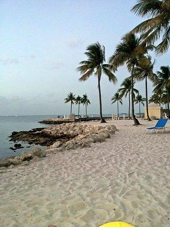 Tranquility Bay Beach House Resort : beach
