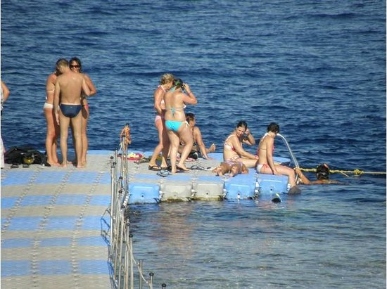 Blue Lagoon Travel: swim