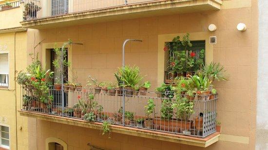 Banys de Mar - Apartamentos Barceloneta: Udsigt fra vores værelse