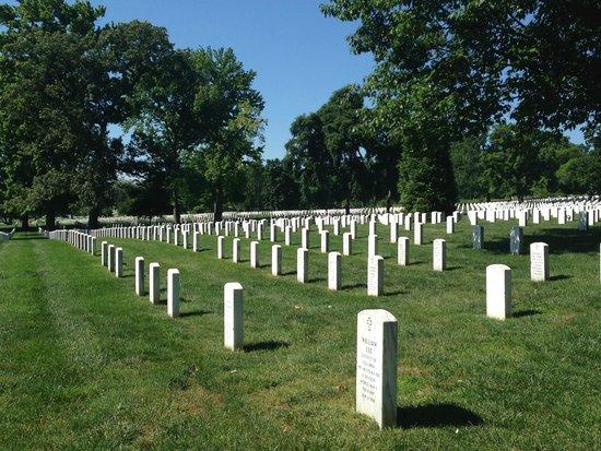 Arlington National Cemetery: Arlington National Cemetary