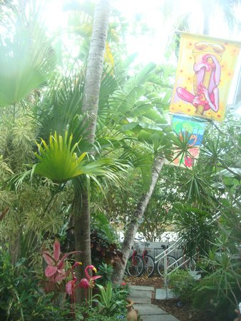 The Grand Guesthouse : Lovely garden