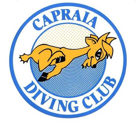 Capraia Isola, Italy: capraia diving
