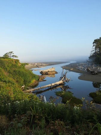 Kalaloch Lodge: Waking up