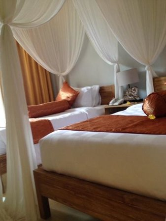 Anulekha Resort  and Villa : my room