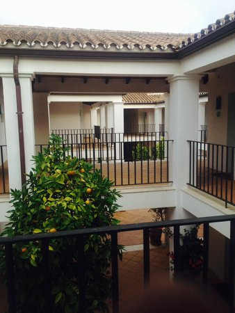 NH Sotogrande: The terrace that connects the upstairs rooms has fruit trees and fragrant flowers growing betwee