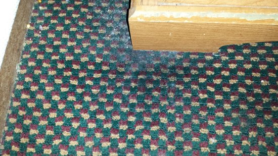 Denver's Best Inn and Suites: Greasy gross urine filled carpets. Wear shoes in rooms