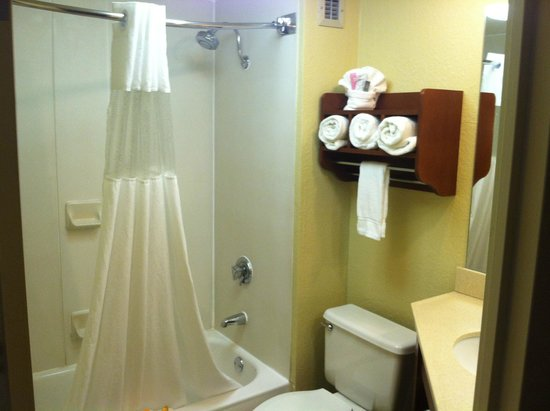 La Quinta Inn & Suites Canton: Bathroom