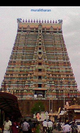 Sri Ranganathaswamy Temple: srirangam temple tower-MURALITHARAN