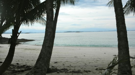 Mucho Gusto Panama Day Tours: Private Island Tour