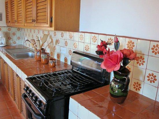 Casa Maria Elena : Cocina de departamento de una recamara