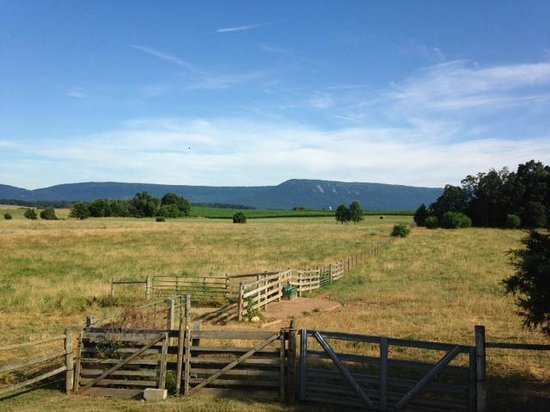 Piney Hill Bed & Breakfast: View from cottage deck