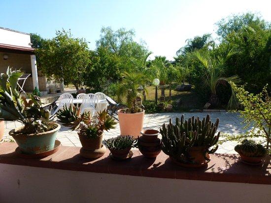 Casa Colonica Liliane : Vista dal patio esterno