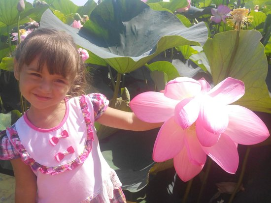 Lotus Valley: Дочка с лотосом