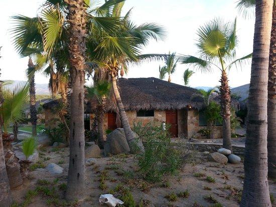 Rancho Leonero Resort : View of a garden room