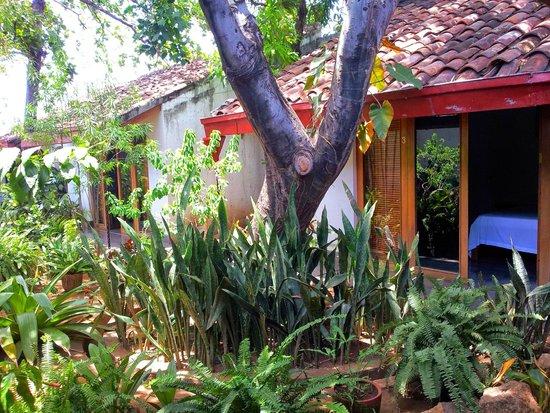 Il Padrino Hotel: Garden