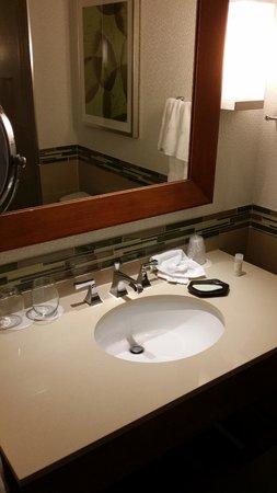 The Westin Ottawa: Salle de bain
