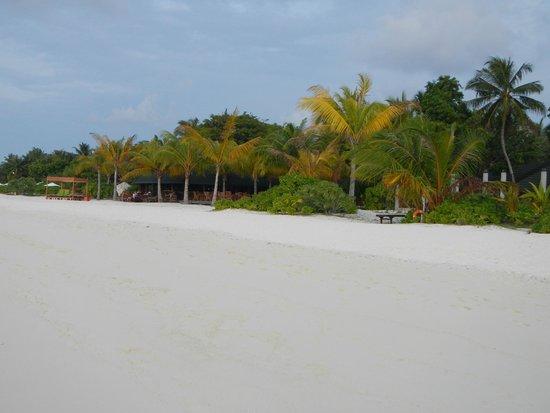 Holiday Island Resort & Spa: Spiaggia