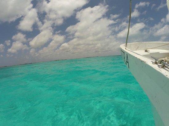 Hostelito Cozumel: The perfect ocean
