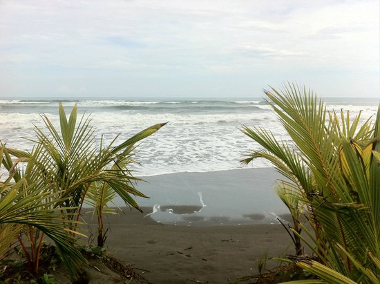 Hotel Delfin Playa Bejuco: Walking up to the beach :)
