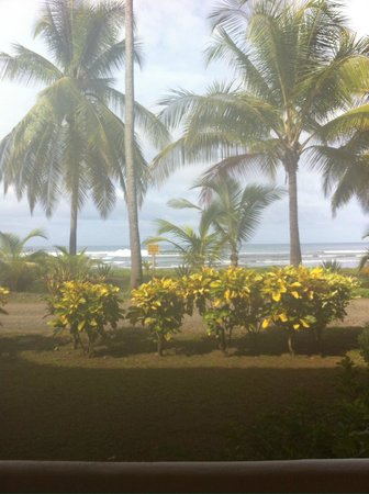 Delfin Beachfront Resort : View from our room