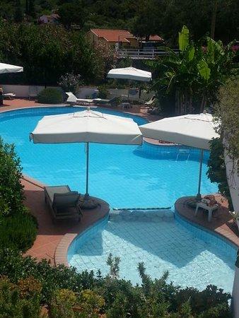 Hotel Gallo Nero : piscina