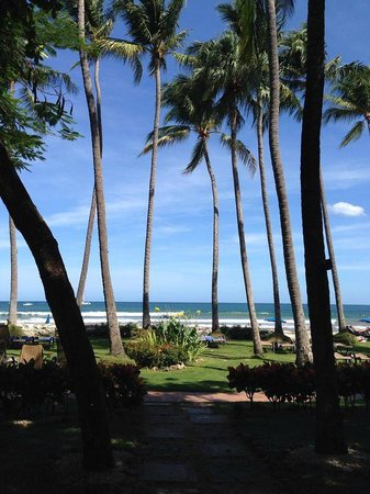 Hotel Tamarindo Diria: View from the garden